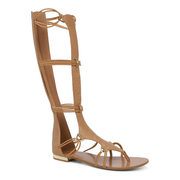 ALDO Miracia - A tall and versatile gladiator sandal cast in an urban...
