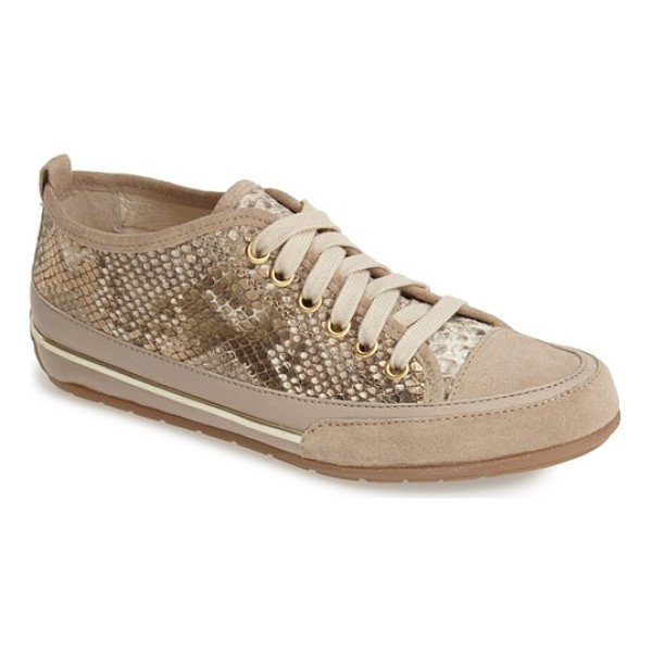 CHARLES DAVID aria snake embossed sneaker - Dramatic snake embossing plays up the street-savvy glamour...