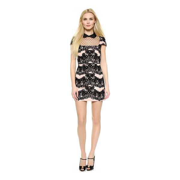 RED VALENTINO Collared lace & point desprit dress - Fused velvet forms a pretty floral pattern on this girly...