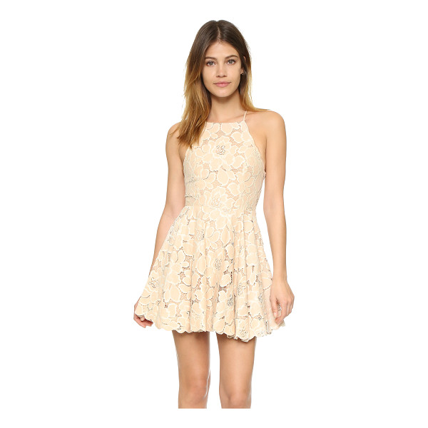 TULAROSA cyrus dress - Floral lace and scalloped trim composes this delicate,...