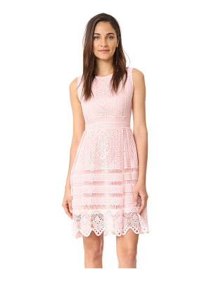 cupcakes and cashmere summers lace fit and flare dress