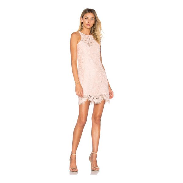 LOVERS + FRIENDS Sky Shift Dress - Classy babes do it best. Elegant eyelash lace fabric...