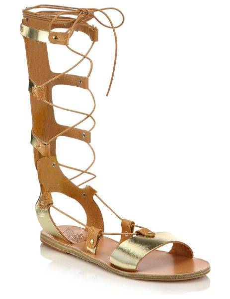 Ancient Greek Sandals thebes metallic leather tall gladiator sandals in gold - Gilded leather lends goddess-inspired glam to tall...