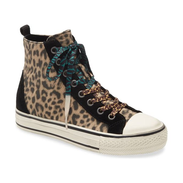 Ash genial punk cheeta high top sneaker in beige
