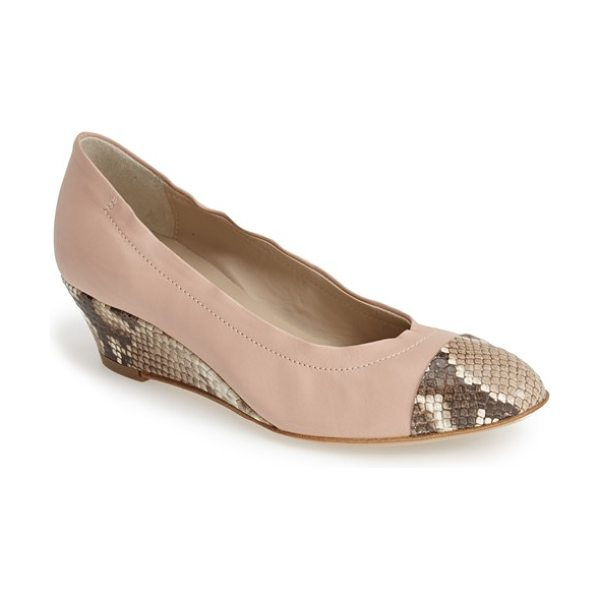 Attilio Giusti Leombruni jody cap toe wedge in taupe snake/ sand - A sleek cap toe and a snake-embossed wedge style a...