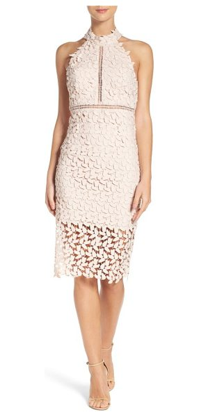 Bardot gemma halter lace sheath dress in prosecco - This leafy lace cocktail dress conceals and reveals with...