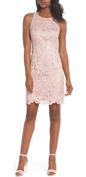 Eliza J lace sheath dress in blush - Bold lace flourishes float on the sheer mesh background...