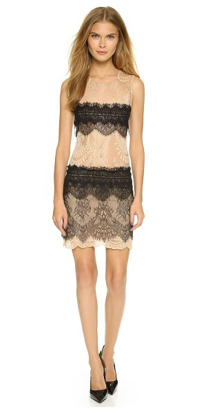 LOYD/FORD Sleeveless lace dress in nude/black - Bright, scalloped stripes trim this delicate lace...