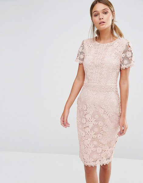 Oasis Premium Floral Lace Pencil Dress in beige