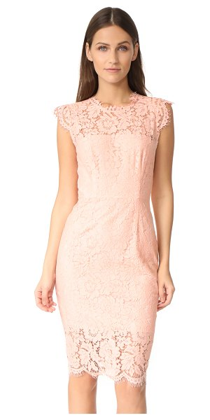 Rachel Zoe suzette lace dress in blush - Chantilly lace composes this sharp-seamed Rachel Zoe...