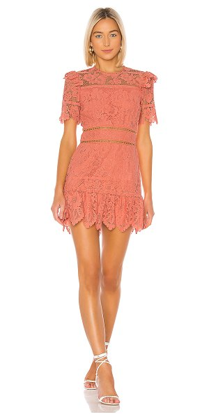 Saylor sigourney dress in burnt coral