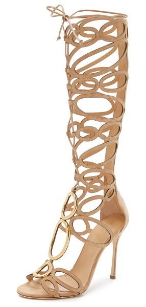 Sergio Rossi Farrah sandals in honey cream - Metal rings and slim suede circles composes these knee...