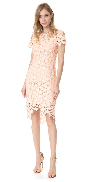 Shoshanna baylor dress in blush - A guipure lace Shoshanna dress in a formfitting...