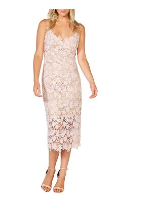 Bardot tayla lace cocktail dress