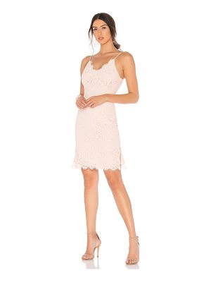 Bobi Botanical Lace Mini Dress