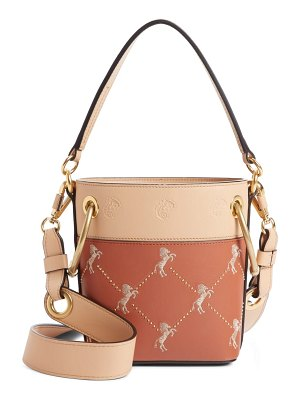 Chloe roy small embroidered leather bucket bag