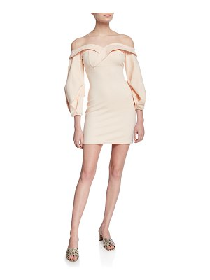 Donna Mizani Camilla Off-the-Shoulder Long-Sleeve Mini Dress