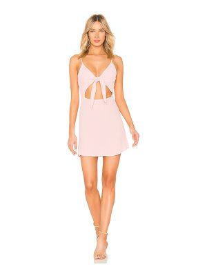 Flynn Skye Bri Mini Dress