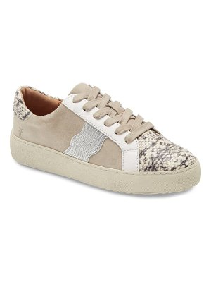 Frye webster low top sneaker