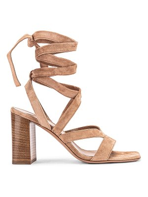 Gianvito Rossi camoscio strappy sandals