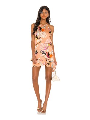 krisa high low halter mini dress