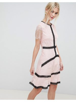 Liquorish lace skater dress with contrast trim