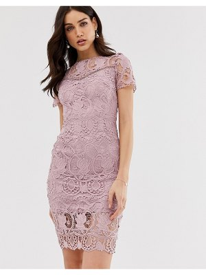 Paper Dolls all over lace short sleeve pencil dress-pink