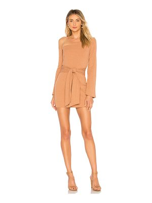 Privacy Please Chloe Mini Dress
