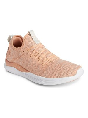 PUMA ignite flash evoknit training shoe