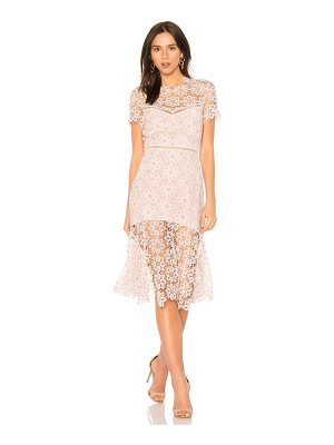 Saylor Lillie Dress